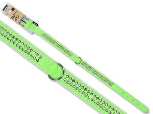 Obojek pro psa Avenue Diamant 2,2cm/50cm zelený