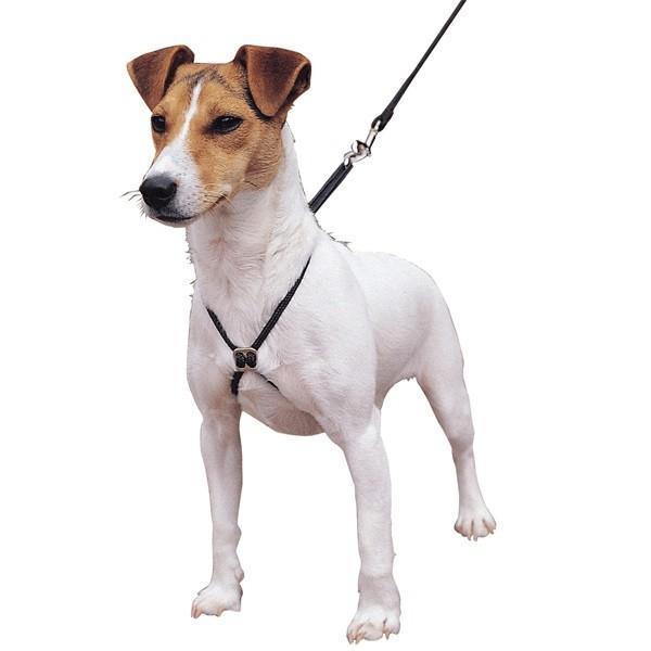 Výcvikový postroj na psa proti tahání, vel. S